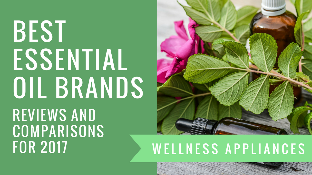 Best Essential Oil Brands Reputable Companies Top Reviews And Which Brands To Avoid Wellness Appliances