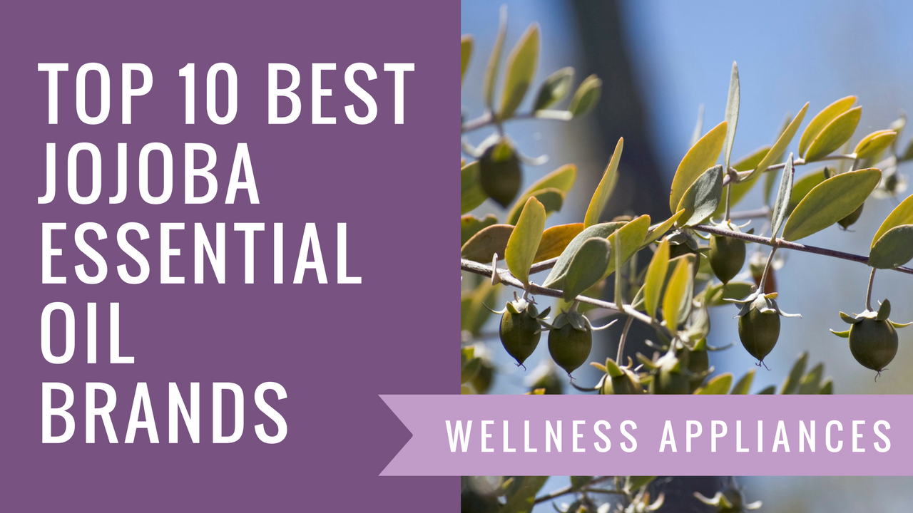 Top 10 Best Jojoba Essential Oil Brands