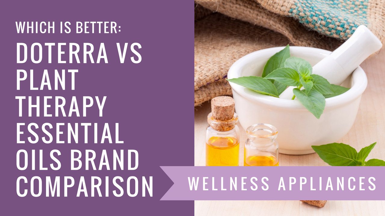 Which is Better: doTerra vs Plant Therapy Essential Oils Brand Comparison